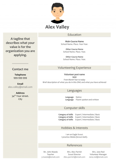 Resume Template Alex Valley