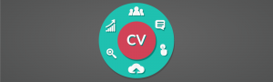 CV for managers